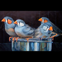 Charm of Finches, by Grace Swanson